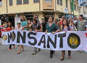 IMG_1630-Monsanto march in Costa Rica